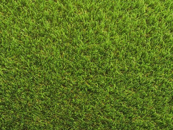 Namgrass - Serenity Bright Artificial Grass